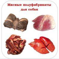 Производство мясных полуфабрикатов для собак. Что это за бизнес?