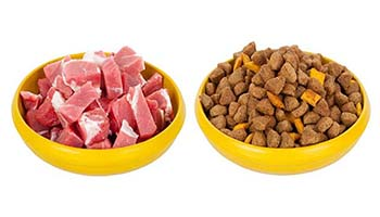 Технология изготовления корма для собак