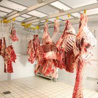 Сколько можно хранить охлажденное мясо в магазине?